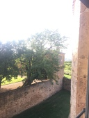 the view from a chateau suite